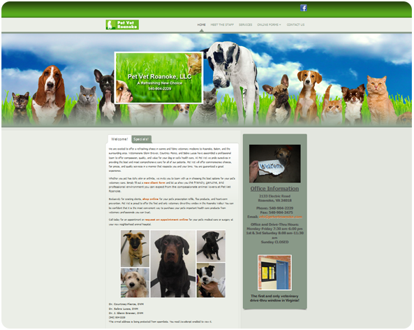 Pet Vet Roanoke Website Design Ormond Beach